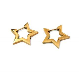 Σκουλαρίκια Estrella