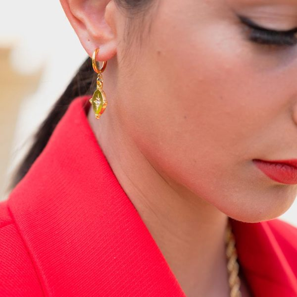 Σκουλαρίκια Izabella